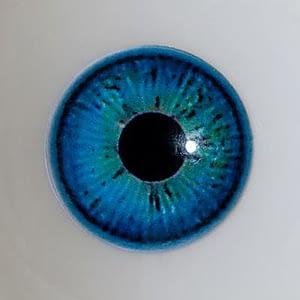 Blau(Wie Abgebildet)